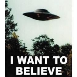 Qu'est-ce qu'une croyance spatiale ?