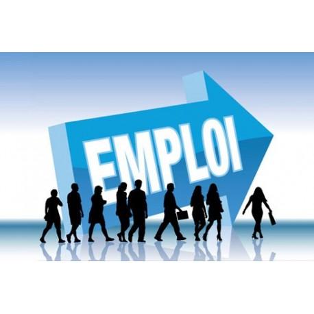 Croissance pour l'emploi ou emploi pour la croissance ?