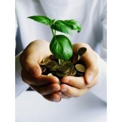 Le capitalisme et l'écologie