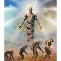 Créationnismes et dessein intelligent, les dessous de l'imaginaire