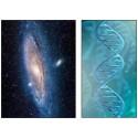 La vie dans le cosmos