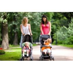 Mutations des moeurs et des techniques et diversification des parentalités