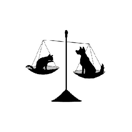 Les animaux ont-ils des droits ?