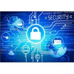 Économie et cybercriminalité