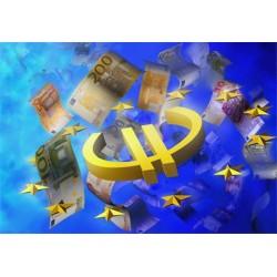 La pluralité monétaire au service de la zone Euro : du concept de monnaie unique à celui de monnaie commune