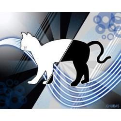 Les étranges concepts de la physique quantique