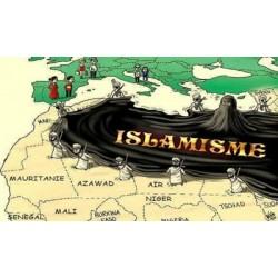 Les mouvements islamistes et l'impact de leur discours en France