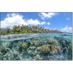 Océan et changement climatique, clarification sur les avancées scientifiques