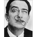 L'oeil et la folie de Dali