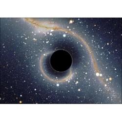 La place des trous noirs dans l'Univers