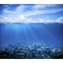 L'océan, gardien de l'équilibre climatique