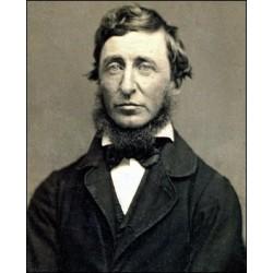 Thoreau et le transcendantalisme