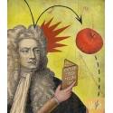 Newton et l'attraction universelle