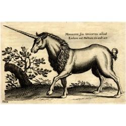 Peut-on être incroyant dans l'ancienne Europe (XIVe-XVIe siècle) ?