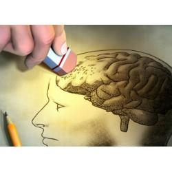 lorsque notre cerveau fait défaut :  voyage au coeur des grands troubles neuropsychologiques