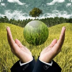 Agriculture, environnement et alimentation : la santé comme dénominateur commun