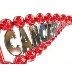 CANCER ET GENETIQUE, QUELLES RELATION