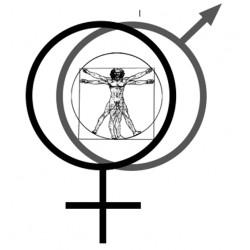 L'Homo sapiens, la femme et l'homme