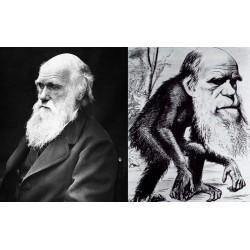 Darwin et le racisme