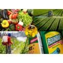 Quelles politiques pour sortir des pesticides ?