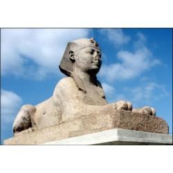 N°4 - Alexandrie, capitale des ptolémées