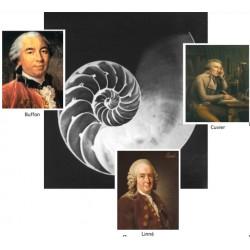 La révolution naturaliste : Linné, Buffon, Cuvier