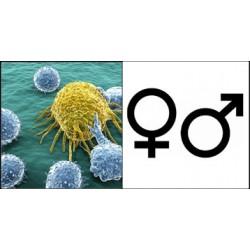 Hommes et femmes, égaux face à l'humanité ?