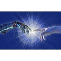 La vie artificielle: modèles bio-inspirés, intelligence artificielle…