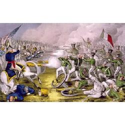 1846, Le bataillon Saint Patrick