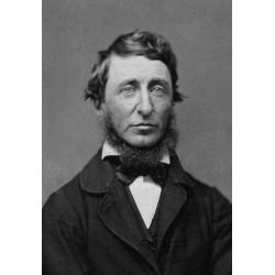 Thoreau : Henry David Thoreau et la désobéissance civile