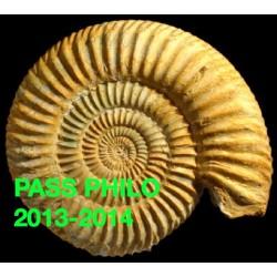 PASS PHILO 2013-2014