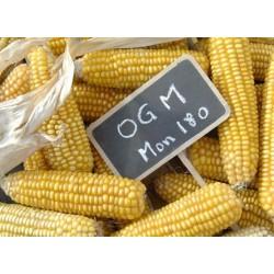 Les fantasmes irrationnels à l'égard des OGM