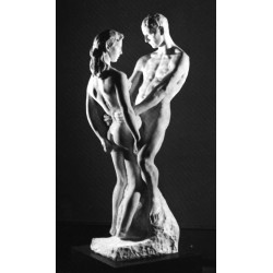 Homo Sexualis - Sexuation et sexualité dans la condition humaine