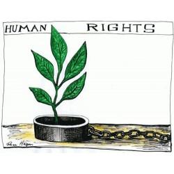 Qu'est-ce que les droits humains ?