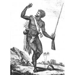 Les révoltes d'esclaves