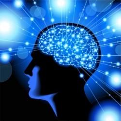 Le cerveau, entre connaissance et pensée
