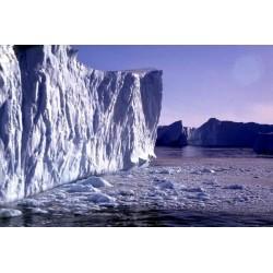 Tout savoir sur les glaciers avant qu'ils ne disparaissent
