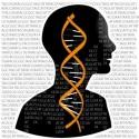 Valeurs humanistes, conscience et déterminismes biologiques