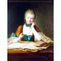 Châtelet : Émilie du Châtelet et la physique newtonienne