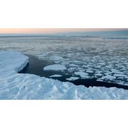 Glace et climat
