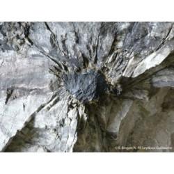 Les effets de la radioactivité... sur les roches !