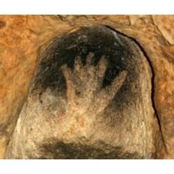 Vie et mort à la grotte de Gargas (Hautes-Pyrénées)