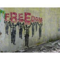 Les catégories de libertés dans notre espèce