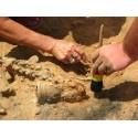 sur l'archéologie
